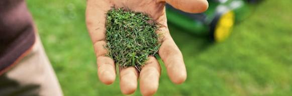 grasmaaien met welk type grasmaaier voor mulchen van gras